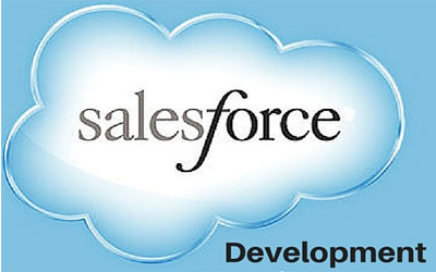 Salesforce Training Service
