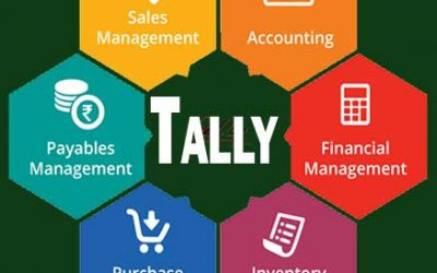 Tally Training Service